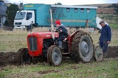 (Zak355) Tags: old vintage scotland farm tractors plough rothesay isleofbute masseyferguson ploughingmatch