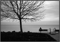Magny (.:.ToTo.:.) Tags: bw 1855mm canoneos350d ff feketefehr balatonkenes