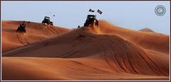 Dubai, United Arab Emirates (Wioletta Ciolkiewicz) Tags: sand dubai desert dunes uae arabic safari desierto emirate unitedarabemirates zea dsert quads duba piasek wydmy pustynia dubaj emiratiarabiuniti zjednoczoneemiratyarabskie    emiratosrabesunidos lahbab wiolettaciolkiewicz