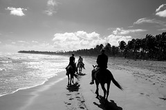 The longest ride (Peter Bugaiski) Tags: ocean horse beach ride palmtree puntacana