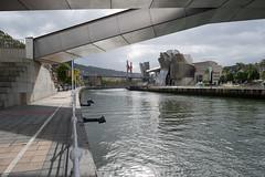 ría del Nervión, Bilbao (Xavier de Jauréguiberry) Tags: espagne espainia españa spain paysbasque euskadi paísvasco basquecountry biscaye biskaia vizcaya bilbo bilbao ria ría ríadebilbao ríadelibaizábal ríadelnervión ingénierie ingeniería engineering passerelle pasarela zubia footbridge pasarelapadrearupe pedroarrupezubia pont puente bridge puentedelasalve puentepríncipesdeespaña architecture arkitektura arquitectura musée museo museum museoguggenheim museoguggenheimbilbao guggenheimbilbao guggenheimbilbaomuseoa ingénieur ingeniero engineer joséantoniofernándezordóñez juanbatanero architecte arquitecto architect frankgehry frankogehry