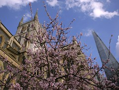 Southwark Cathedral (Adam Swaine) Tags: county uk blue trees england sky english beautiful canon photography flora cathedral britain cities shard southwark 2014 24105mm swaine englishcathedrals thisphotorocks adamswaine mostbeautifulpicturesmbppictures wwwadamswainecouk