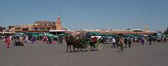Jamaa el Fna (Kam Sanghera) Tags: horse shop square place el maroc marrakech souk medina cart fna plaze jemaa elfna djemaa jamaa aperturewoolwich apws