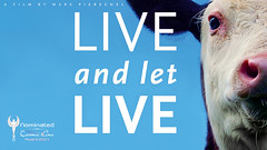Live and let Live (Cosmic Cine) Tags: angel poster tiere vegan cine movies filme awards cosmic plakate leben nominee vegetarisch vegetarier liveandletlive veganer vegetarismus veganismus cosmicangel nominierte cosmiccine cosmiccinefilmfestival2014 cosmiccinefilmfestival