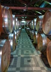 Italy Piedmont - Asti Rocchetta Tanaro Braida Winery 4 - 05-14 (Wine On The Road) Tags: road trip tour wine ben visit scene vin behind win weinberg experien ital unfin piedmon piemon unfilter