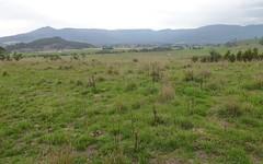 1, Green Acres Rd, Dairy Plains TAS