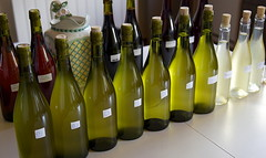 "Levin Sauvignon Blanc Blending • <a style=""font-size:0.8em;"" href=""http://www.flickr.com/photos/133405556@N08/19456346284/"" target=""_blank"">View on Flickr</a>"
