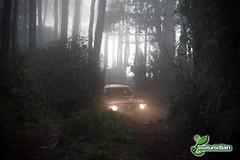 Bosque (ecoturixtlan) Tags: travel naturaleza nature mexico oaxaca turismo sierrajuarez ecoturismo sierranorte ixtlan kiosgarcia kiosphotography