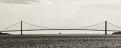 Verrazano Traffic (PAJ880) Tags: verrazano bridge nyc staten is brooklyn harbor ship traffic black white bw mono urban waterfront