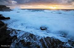 Ocean morning (jongsoolee5610) Tags: seascape sydneyseascape ocean sea sydney australia maroubra wave sunrise