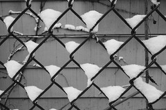 snowcatcher (KevinIrvineChi) Tags: chicago chicagoist snow snowy snowcovered snowfall snowstorm snowyalley fallen triangle triangles chainlink chainlinkfence fence pattern abstract grid illinois wall siding outdoors outside macro residue argyle scales sony dscrx100 flickr yourbestshot2017 yourbestshot your best shot 2017 winter noir et blanc black white bw bnw blackandwhite blanca monochrome blackwhite