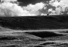 Edge of the world (Mario Ottaviani Photography) Tags: sony sonyalpha italy italia paesaggio landscape travel adventure nature scenic exploration view vista breathtaking tranquil tranquility serene serenity calm marioottaviani edge world blackwhite blackandwhite monocromatico monocromo monochrome biancoenero