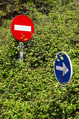 two traffic signs with vegetation (Mimadeo) Tags: blue red two green nature grass sign warning way bush couple traffic post symbol no grow icon direction roadsign oneway arrow forbid attention signal information bushes prohibited halt