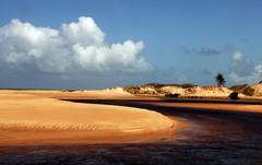 (steveannovazzi) Tags: beach brasil sand desert brasile stefano lodi stefanoannovazzi annovazzi