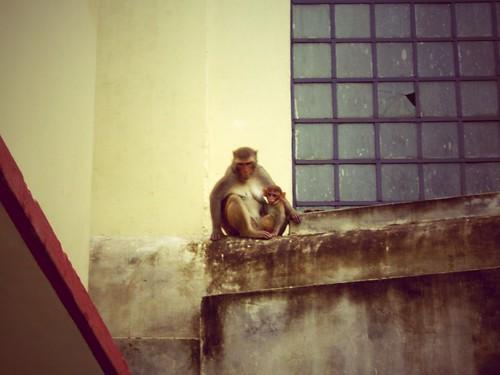 Varanasi, Inde