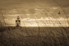 Grassland Lighthouse