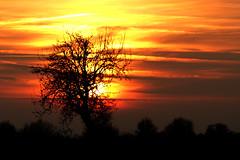 Sonnenuntergang (gutlaunefotos ☮) Tags: sonnenuntergang
