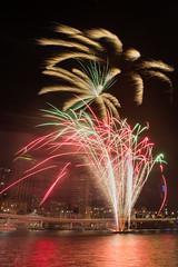 DANW0615 (Dan Wilson Photographer) Tags: dan canon eos photographer fireworks south bank australia brisbane southbank wilson australiaday canoneos 2014 straya strayaday danwilsonphotographer