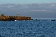 _DSC6659 - Version 2 Galapagos  Santiago/Puerto Egas  area shoreline (ChanHawkins) Tags: am april sat santiagopuerto egas 13 galapagos
