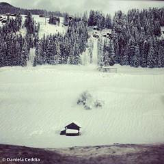 (Daniela Ceddia) Tags: panorama casa italia neve inverno montagna bianco freddo paesaggio dolomiti bolzano sciare sesto