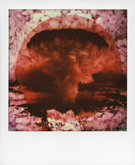"""""""Bloom and Bust in the Land of the Rising Sun II"""" (Rhiannon Adam) Tags: flowers collage japan polaroid explosion hiroshima bust bloom cherryblossom atomicbomb layered instantfilm ruthozeki thelandoftherisingsun impossibleproject ataleforthetimebeing"""