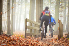 Mountain bikers (robvanesch (www.ruimtesinbeeld.nl)) Tags: wood autumn trees red terrain woman man motion blur male green nature beauty leaves bike bicycle sport yellow misty fog race speed forest relax fun outdoors bicycling cycling healthy movement alley colorful cyclist cross exercise offroad action seasonal foggy mountainbike fast lifestyle competition adventure riding cycle biking mtb biker leisure recreation activity athlete relaxation autumnal sportsman atb racer