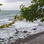 Ostseestrand unterhalb der Kreidefelsen bei Stubbenkammer auf Rügen (10) thumbnail