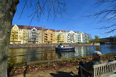 Ein schner Tag (deta k) Tags: berlin germany deutschland spring spree frhling spreeufer sooc nikond7100