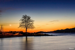 Nautical Twilight with Crescent Moon (winson.tang) Tags: vancouver stars spanishbanks lonelytree crescentmoon treereflection nauticaltwilight afterthesunsets treewiththemoon horizonwithmoon