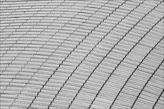 Audience Hall roof (loop_oh) Tags: italien roof italy pope vatican rome roma history paul hall italia audience capital unesco tiber papa dach rom lazio metropole papst vatikan enclave spqr vatikanstadt cittàdelvaticano audienz audiencehall enklave paulviaudiencehall
