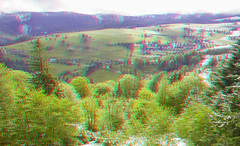 Schwarzwald and Freiburg 3D (Alexander Savin) Tags: snow germany stereoscopic 3d anaglyph stereo freiburg schwarzwald stereography stereo3d redcyan s3d