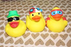 Funky Ducks [24/52] (eskayfoto) Tags: canon toy eos rebel ducks funky photooftheweek quack 52 week24 2015 2452 funkyducks sooc funkiness toofunky project52 700d canon700d canoneos700d t5i weektheme week24theme project5224 canonrebelt5i rebelt5i 52weeksthe2015edition week242015 weekstartingthursdayjune112015 notdrakey sk201506137983