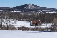 Little Shed (Flapweb) Tags: vergennes vermont