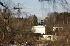 Through The Trees (Steffe) Tags: jordbro crane haninge sweden allmännyttan publichousing moränvägen