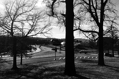 Photo Feb 13, 2 36 23 PM (tracylephoto) Tags: adventure explore exploration university college school campus trees sunlight shadows landscape flickr view perspective story history iphone phonese film analog lomography new sky air nature art light sun clouds lines pittsburgh pennsylvania carnegiemellon carnegiemellonuniversity geese park grass field windows architecture building shadow mono bw blackandwhite road street crosswalk cars streetphotography blackandwhitestreet