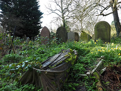 shroud tomb in spring (Johnson Cameraface) Tags: 2017 march spring olympus omde1 em1 micro43 mzuiko 1240mm f28 johnsoncameraface yorkcemetery cemetery york yorkshire tomb graves headstone gothic