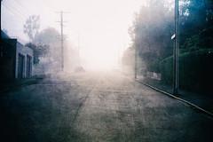Signal Hill Road (borealnz) Tags: signalhillroad mist fog texture gloomy atmospheric cars road street houses garage newzealand nz dunedin otago