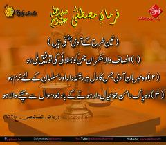 11-3-17 (zaitoon.tv) Tags: mohammad prophet islamic hadees hadith ahadees islam namaz quran nabi zikar