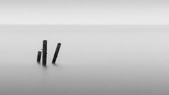 Happisburgh 19/03/2017 (Matthew Dartford) Tags: bw blackandwhite bokeh coastal defences growth happisburgh le longexposure minimalism minimalistic mono norfolk posts