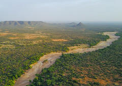 Aerial view of a dry river in the Hamer tribe territory, Omo Valley, Turmi, Ethiopia (Eric Lafforgue) Tags: above aerial aerialview africa beautyinnature colourimage colourpicture copyspace day drone dry eastafrica environment ethdrone031777 ethiopia hamer horizontal hornofafrica landscape nature nopeople nobody nonurbanscene outdoors photography physicalgeography plain river scenics tranquilscene tranquility trees turmi omovalley et