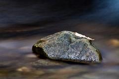 The Leaf (GlasgowPhotoMan) Tags: trossachs rock leaf water slowshutter movement landscape waterscape