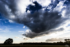 Clouds (stefan.behm) Tags: trees sunset sky sun field clouds germany deutschland sonnenuntergang sundown dusk feld himmel wolken sonne bume brandenburg sbphotography 2013 sb stefanbehm