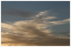 Windy sunset (Zelda Wynn) Tags: weather wind auckland goldensunset cloudscape troposphere zeldawynnphotography