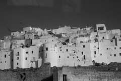 Ostuni - My 2nd home  (itspompea) Tags: old city travel trees summer vacation italy white house home nature landscape la town farm olive land bianca citta ostuni 2013