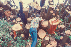 climbing -dead- trees (Denis Naccari) Tags: trees light portrait people italy woman man love me nature forest 35mm vintage rainbow mood peace natural earth energie union hipster young retro vision amour unusual paix denisnaccari