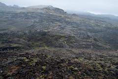 (giuli@) Tags: panorama digital landscape volcano lava iceland moss caldera muschio eruption paesaggio vulcano hotsprings lavafield islanda krafla mvatn fumarole fumaroles leirhnjkur eruzione northiceland giuliarossaphoto noawardsplease nolargebannersplease campodilava eruptionsite kraflafires fujinonxf18mmf2r fujifilmxe1