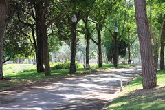 pathway (Josiedurney) Tags: barcelona life trees light summer people sun green nature grass architecture spain mine shadows darkness bright path live empty parks adventure tall catalunya lovely dappled pathway 2013