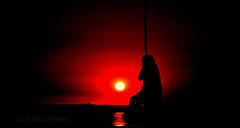 sunset (Luis Diaz Devesa) Tags: ocean blue trees sunset sea sky espaa sun tree sol beach nature silhouette clouds landscape atardecer mar spain sand europa playa arena galicia galiza hanging zipline pontevedra colgada playadelaconcha vilagarciadearousa villagarciadearosa tirolinea luisdiazdevesa