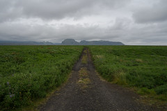 (giuli@) Tags: road panorama digital iceland strada paesaggio route1 islanda southiceland giuliarossaphoto hringvegur noawardsplease fujinonxf18mmf2r fujifilmxe1