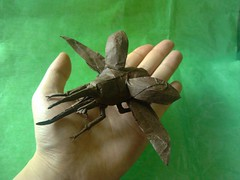 Dynastes Neptunes flying- Manuel Sirgo Alvarez (Lambert_G) Tags: origami beetle manuelsirgo